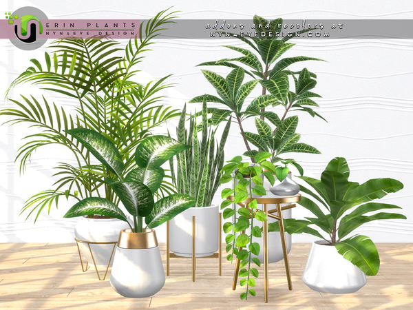 Erin Plants by NynaeveDesign