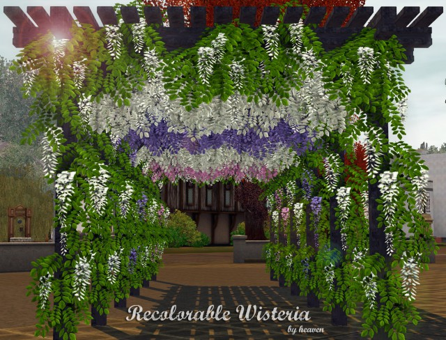 Recolorable Wisteria by heaven