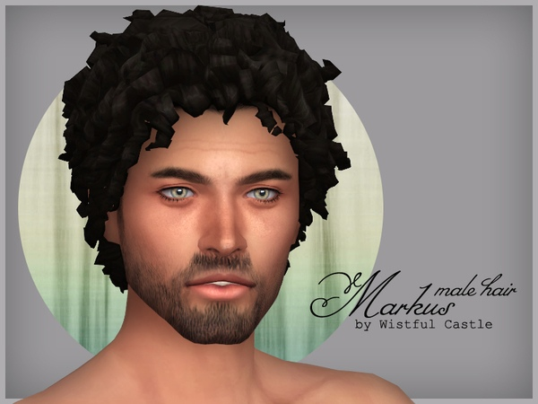 Markus - male hair by WistfulCastle