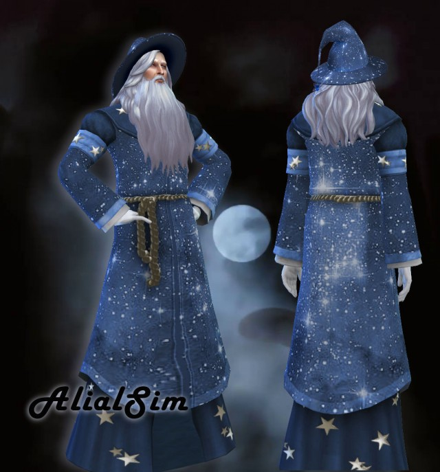 Wizard Costume by AlialSim