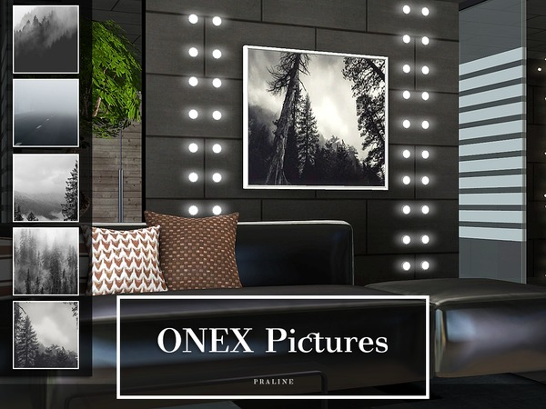 ONEX Pictures by Pralinesims