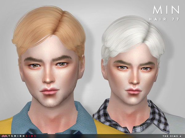 Min ( Hair 77 ) by TsminhSims