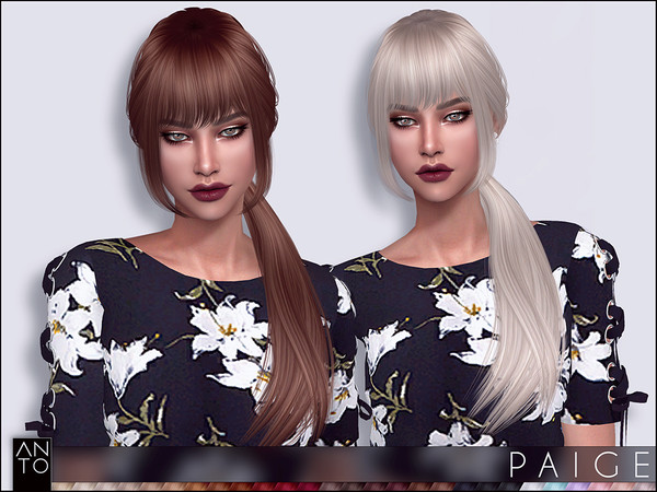 Anto - Paige (Hairstyle)