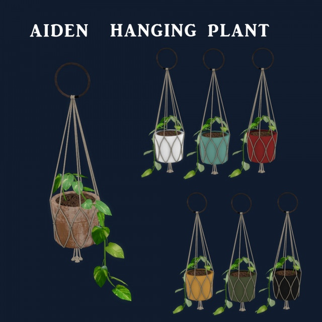 Aiden Hanging Plant by Leo-Sims