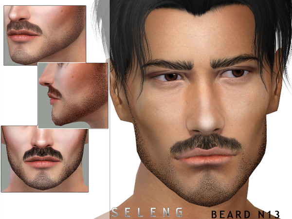 Beard N13 by Seleng
