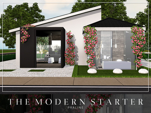 The Modern Starter by Pralinesims