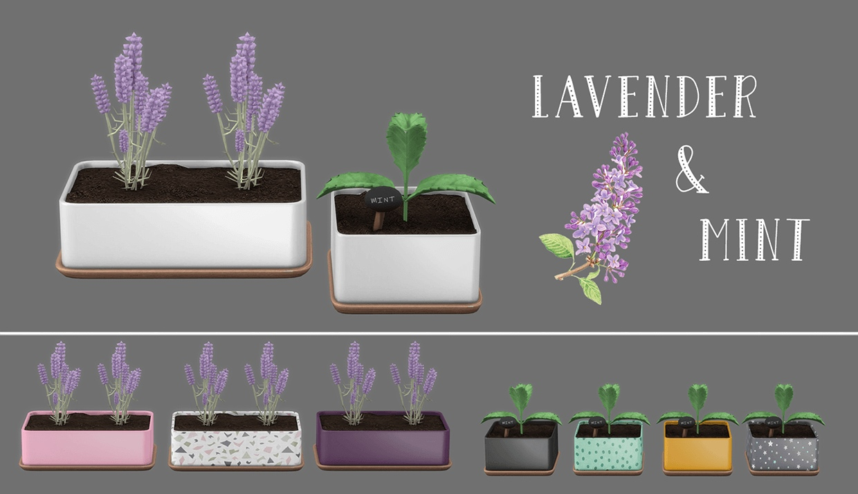 Lavender mint by Leo-Sims
