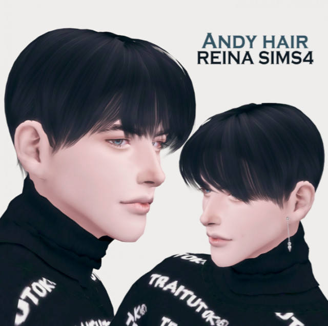 Andy hair by Reina