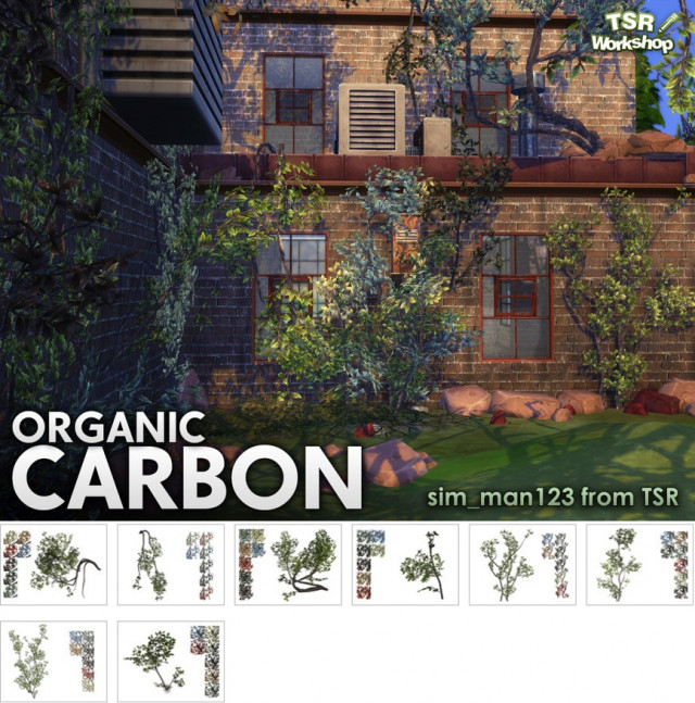 Organic Carbon by sim_man123
